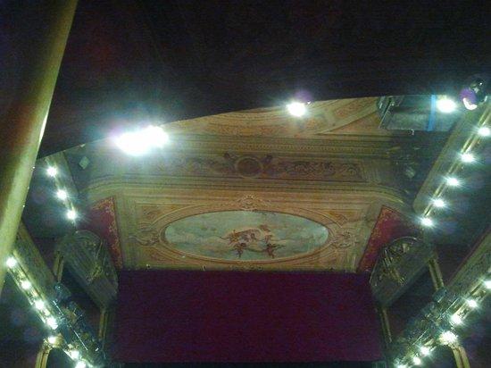 Teatro Liceo: hermoso techo