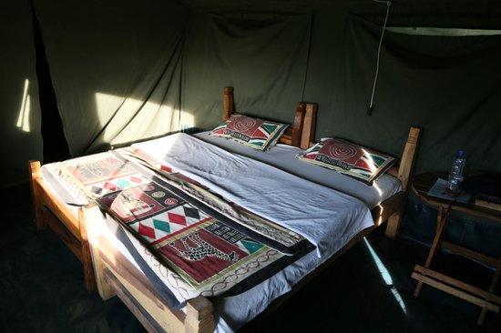 Ndutu Wildlands Camp: chambre