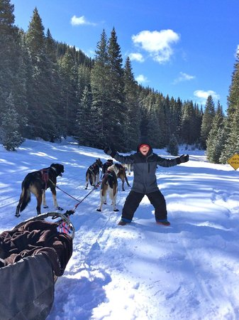 Monarch Dog Sled Rides: Our oldest with the first team.