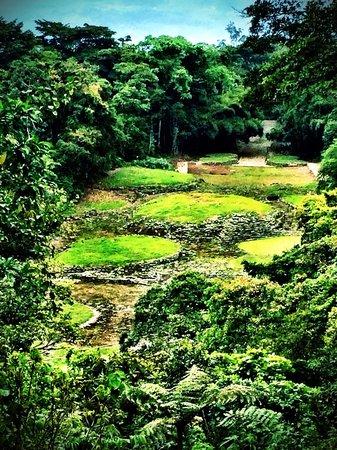 Rancho Naturalista: Monumento Nacional de Guayabo is a nice place to visit while you are staying at Rancho Naturalis