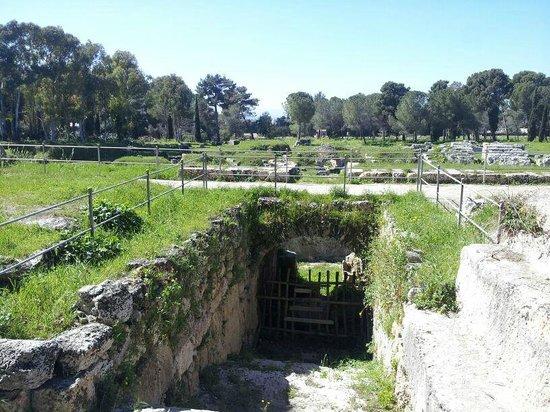 Parco Archeologico della Neapolis : anfiteatro romano
