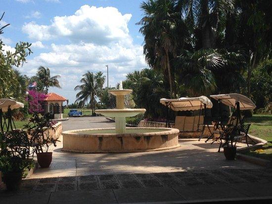 Hotel Los Cactus: Entrance