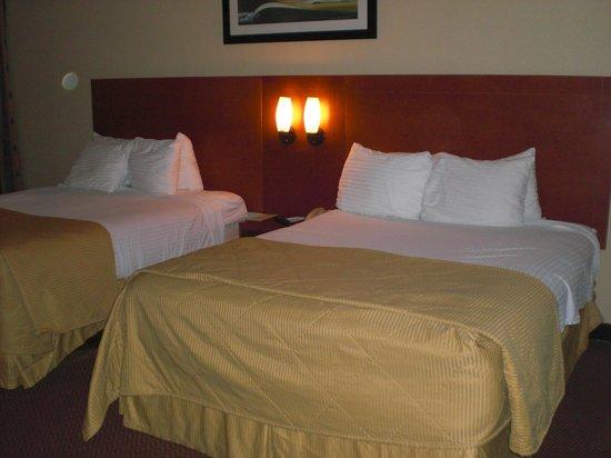 Best Western Lake Buena Vista - Disney Springs Resort Area: Beds