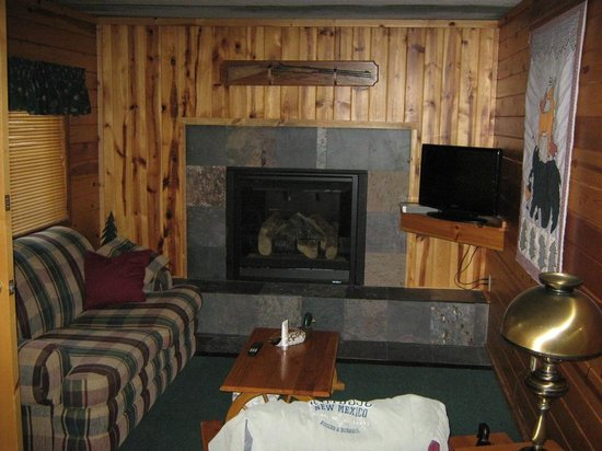 Ruidoso Lodge Cabins: Living room