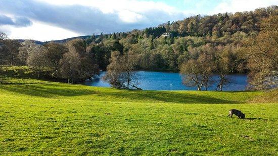 Loch Monzievaird Self Catering Lodges : Loch 2