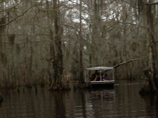 Pearl River Eco Tours : tour boat