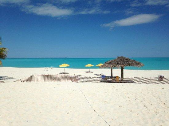 Treasure Cay Beach, Marina & Golf Resort: View of Beach from the Bar