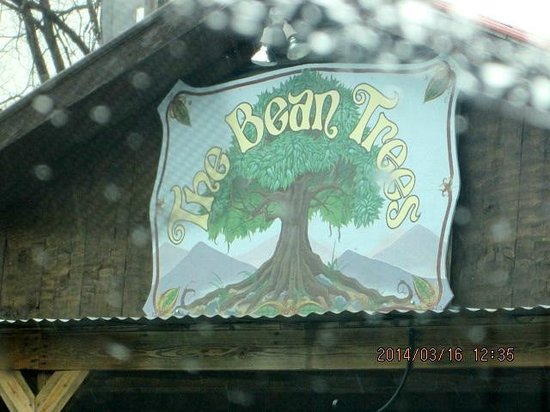 Bean Trees Cafe: a great place to stop on a cold and rainy day