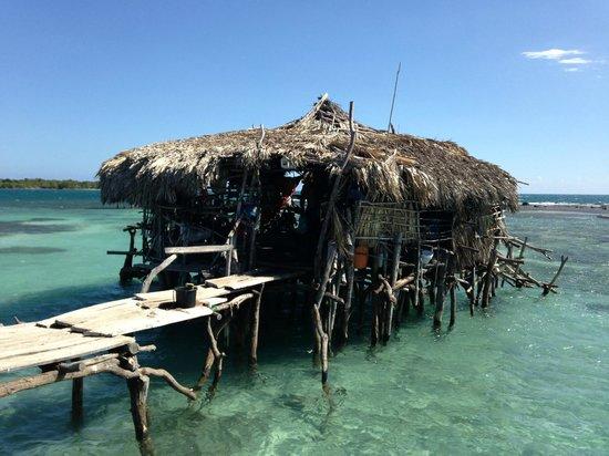 JuJu Tours: Pelican Bar