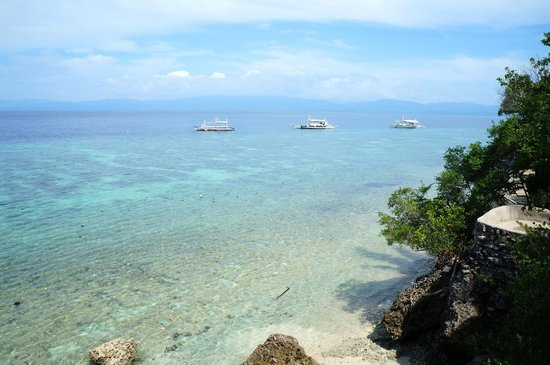 Quo Vadis Dive Resort : The view steps away from your room