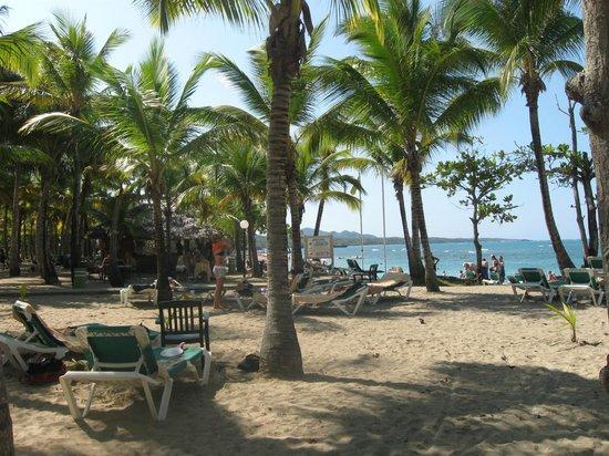 ClubHotel Riu Merengue: Beach
