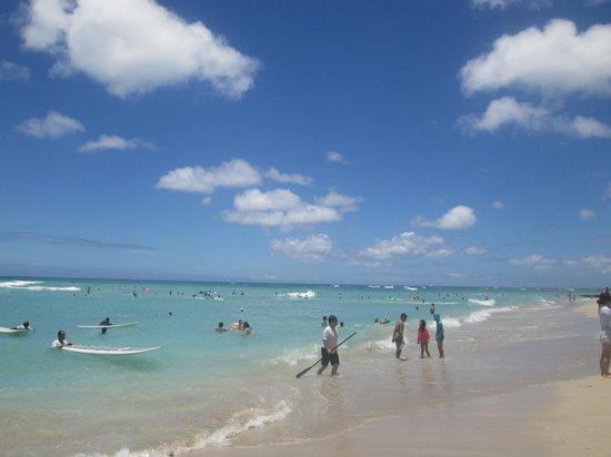 The Royal Hawaiian, a Luxury Collection Resort : Waikiki Beach WOW