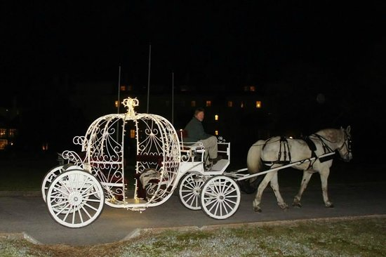 Jekyll Island Club Hotel: Private carriage ride--Excellent
