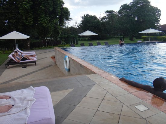 Mount Meru Hotel: Grounds from the pool