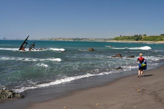 Oakura Beach Holiday Park : Looking toward New Plymouth from 1.5k south of Oakura