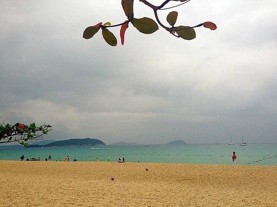Resort Horizon: 海邊