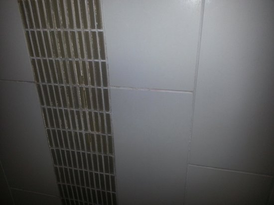 Hyatt Place Cincinnati-Northeast: Black mold in the  shower