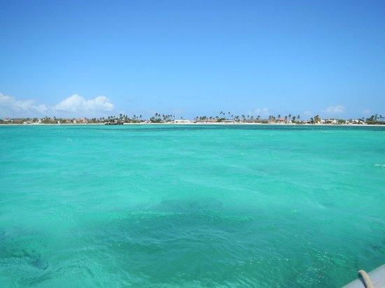 Hyatt Regency Aruba Resort and Casino: The ocean relaxes the soul