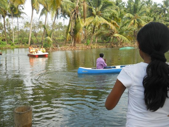 Mangrove Island Village Private Tours: leisure activities at mangrove island lagoon