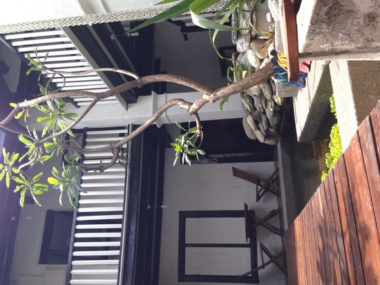 Layang Layang Guest House: Little garden