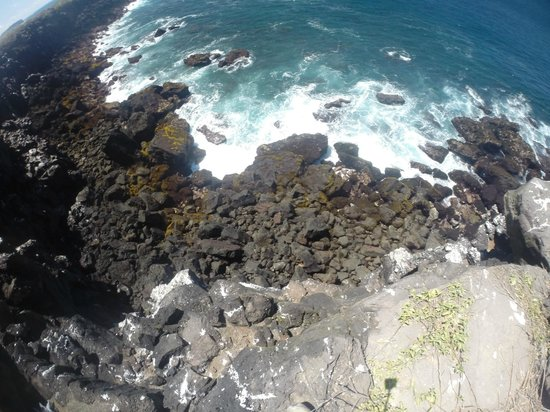 Las Loberias: A view from the cliffs