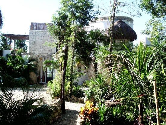 Maya Cala: mayacala.com