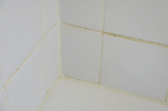 Days Inn - Victoria on the Harbour : grout in bath tub