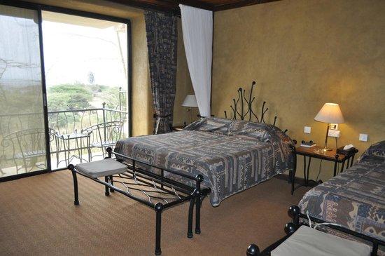 Serengeti Sopa Lodge: Номер