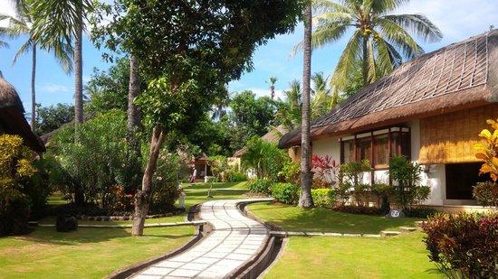 Siddhartha Ocean Front Resort & Spa: Siddhartha Hotel grounds