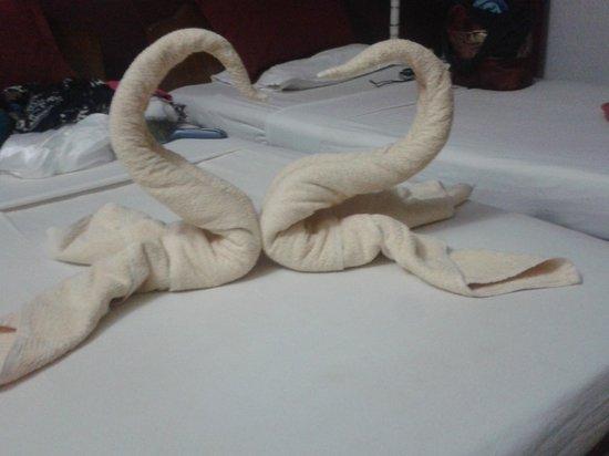 Falcon Resorts: Suresh's towel swans