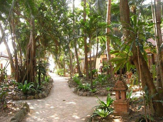 """Chaweng Buri Resort: Der """"grüne Bereich"""""""