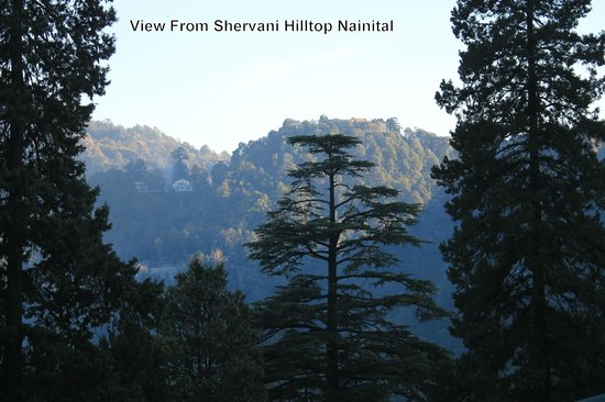 Shervani Hilltop: View from the Grounds