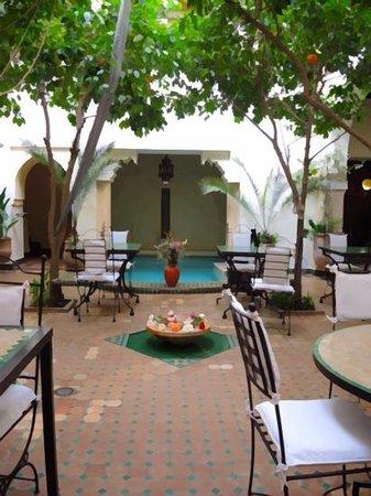 Riad Dar Dialkoum : patio sous les orangers