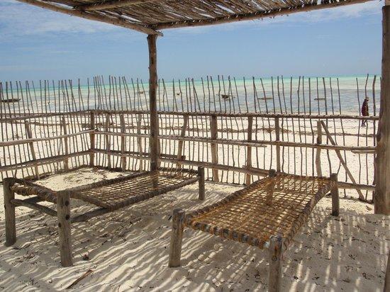 Uhuru Beach : Nos transats devant la chambre