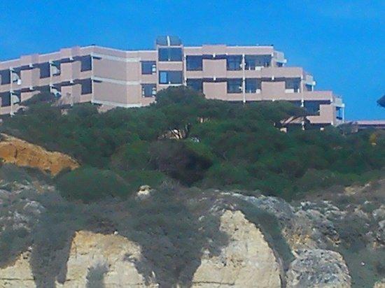 Auramar Beach Resort : View from beach