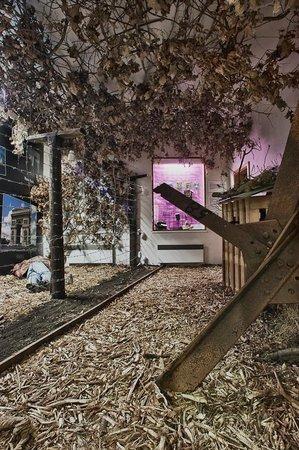 Muzeum Zelezne Opony: Muzeum Železné opony