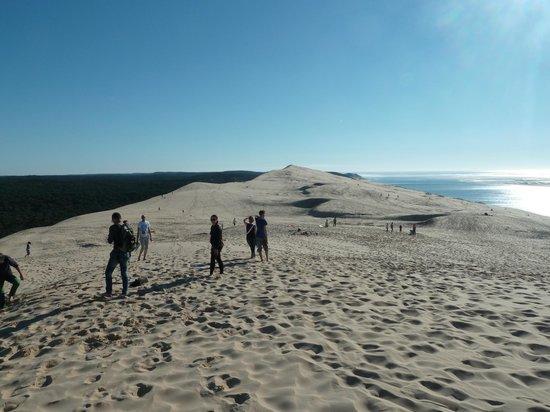 Dune du Pilat : vers le sud