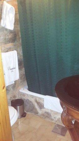 Pineland Hotel and Health Resort : bathroom