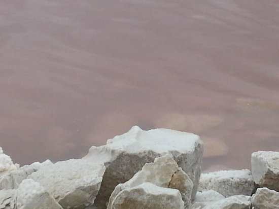Salin d'Aigues-Mortes: le sel