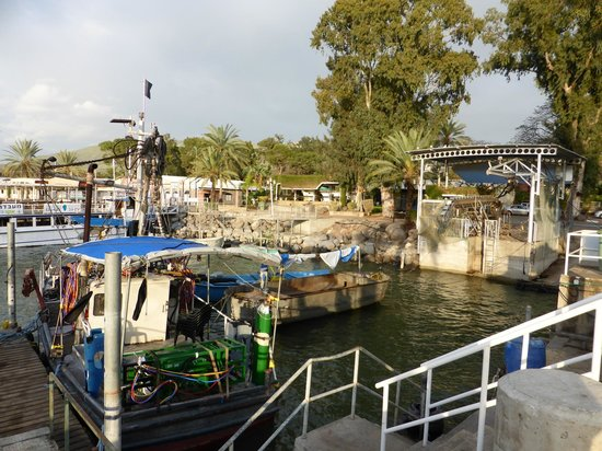 Ein Gev Fish Restaurant : Port de pèche