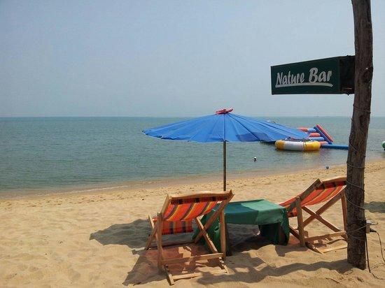 Nature Bar : .