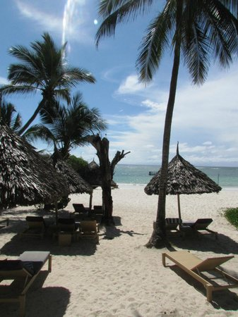 Leopard Beach Resort & Spa: plage