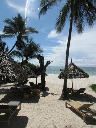 Leopard Beach Resort & Spa : plage