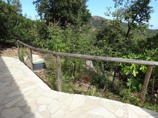 Résidence Pietra di Sole : terrasse
