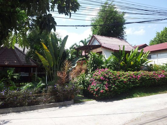 Hacienda Beach Resort : Garden Bungalow