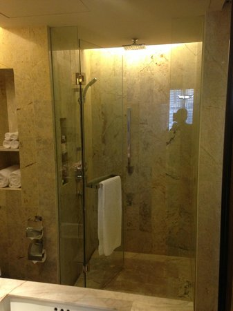 DoubleTree by Hilton Sukhumvit Bangkok : The Bathroom