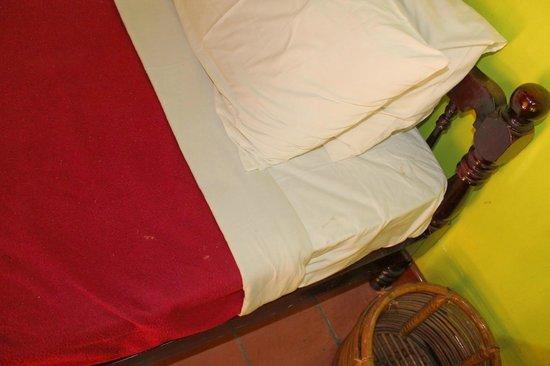 Coir Village Lake Resort: stain on bedsheet