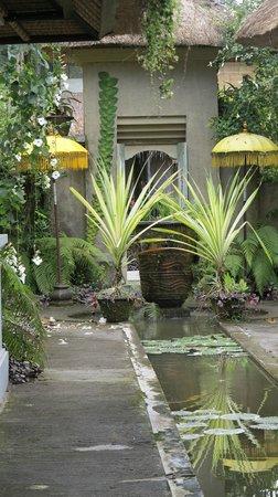 فيلا بوري دارما أجونج: Beautiful surroundings