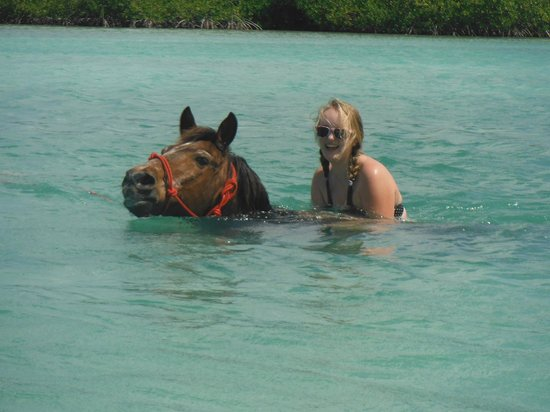 Horse Ranch Bonaire: Gracie in the water
