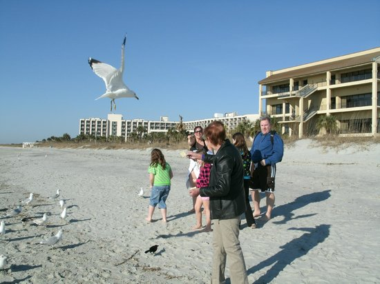 DoubleTree Resort by Hilton Myrtle Beach Oceanfront: Fun at the beach